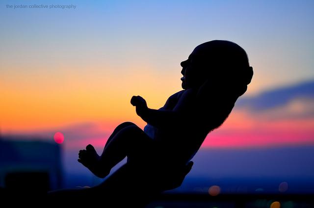 Babys (Filmtipp)